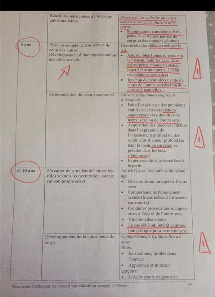Fond De Carte Bresil Eduscol.Cahiers Pedagogiques Nouvelles 453 453