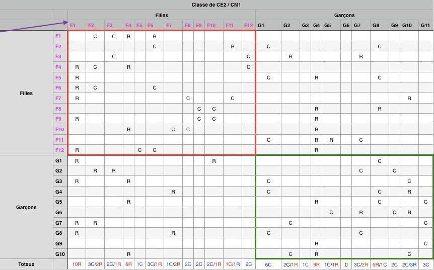 Présentation d'un sociogramme réalisé dans une classe de CE2/CM1 et représentatif de l'ensemble des données recueillies.
